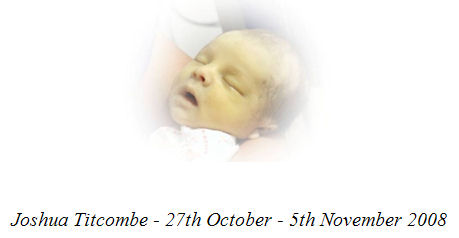 Joshua Titcombe - 27th October - 5th November 2008
